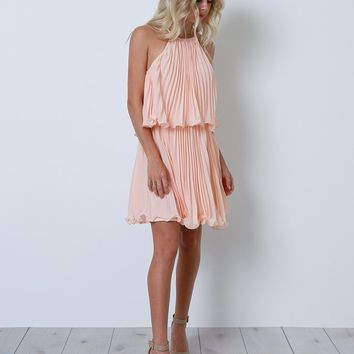 Seize The Moment Dress - Blush Chiffon