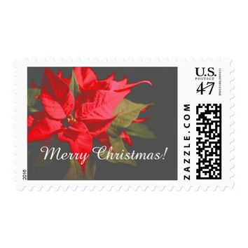 Pretty Red Poinsettia Flower Merry Christmas Stamp