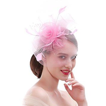 FIRYIN Veil Vintage Feather Fascinator Hat For Women Headband