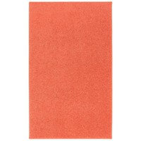 Anika Tangerine Orange Area Rug
