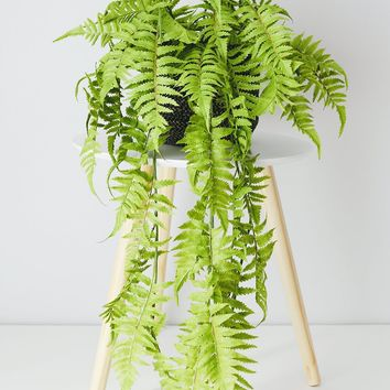 """UV Protected Outdoor Plastic Boston Fern Hanging Plant - 35"""" Long"""