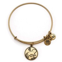 Alex and Ani Leo Charm Bangle Bracelet - Rafaelian Gold Finish