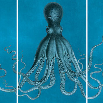 Bodner's Octopus Triptych Art Print Sea Squid Vintage Nautical Decor Ocean Wall Art - Giclee Print on Cotton Canvas and Paper Canvas