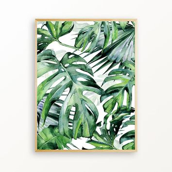 Into The Tropical Jungle  - Matte Print