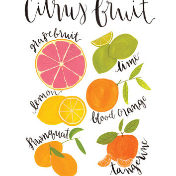Citrus print, wall art print, kitchen art, kitchen decor, wall art, fruit art, orange, lemon, lime