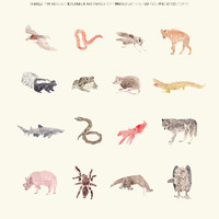 Animals of Low Moral Standing Print by AnimaliaShop on Etsy