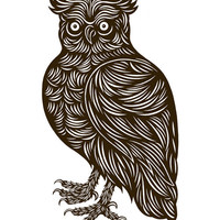 20x200 - Print Information | Dapper Owl, by DonCarney