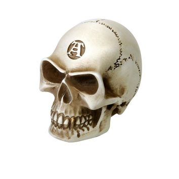 Bone Colored Skull Gear Knob