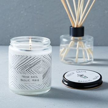 Café Scented Candle + Diffuser - Fresh Basil