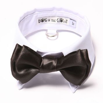 White Shirt Collar + Black Bow Tie