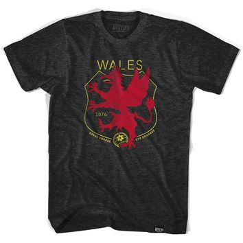Wales Dragon Crest Soccer T-shirt