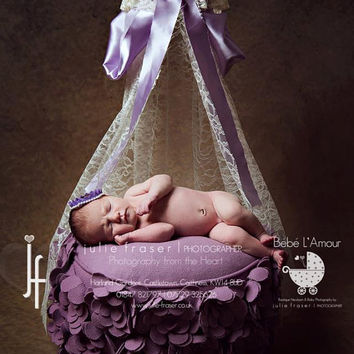 Lace Lilac & Pearl Canopy - newborn photo props, newborn photography, newborn canopy, props, photo props
