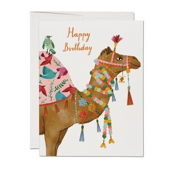 RED CAP CARDS CAMEL CARD