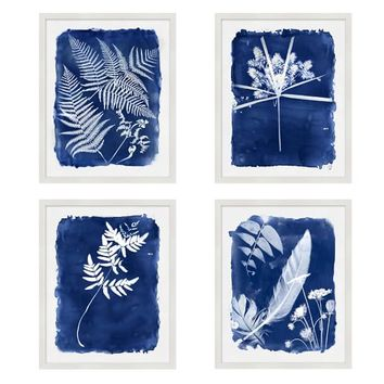 Cyanotype Prints