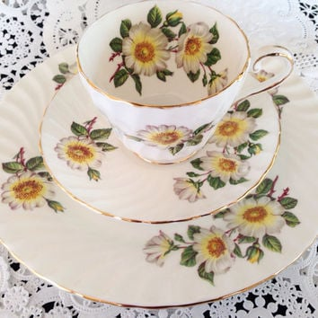 Aynsley White Wild Rose English Fine Bone China Vintage Choice of Teacup & Saucer Set and Matching plate - Yellow White Pink Roses large