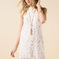 Sondra Scalloped Lace Shift Dress