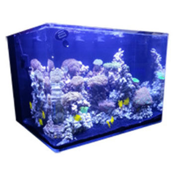 JBJ Nano Cube 45 Gallon RL Rimless Biotope Aquarium