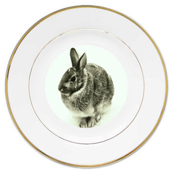 Easter plate, rabbit plate , bunny plate , porcelain plate, desert plate, salad plate,hors d'oeuvre plate, kitchen ware,gourmet , ceramic