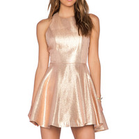 Alice + Olivia Lia Circle Skirt Dress in Gold & Pink Multi