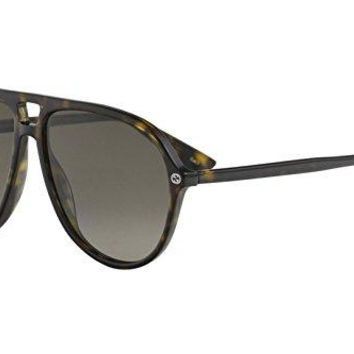 Sunglasses Gucci GG 0119 S- 002 002 AVANA / BROWN / AVANA