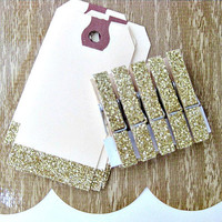 Set of 5 Glitter Gift Tags and 5 Glittered Clothespins