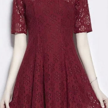 Plain Sheer Panel Round Neck Lace Skater Dress