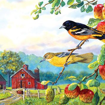 Old Orchard Hideaway 550pc Jigsaw Puzzle