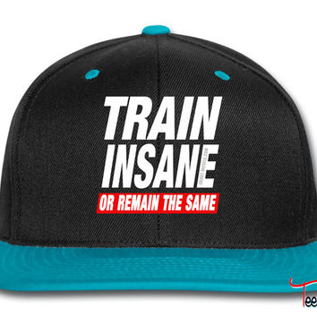 Train Insane Or Remain The Same Snapback