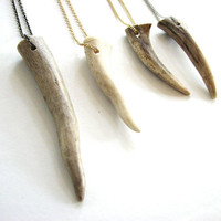 antler tip necklace - YOUR CHOICE