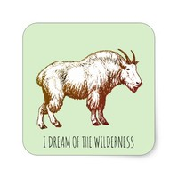 I Dream Of The Wilderness Mountain Goat Square Sticker