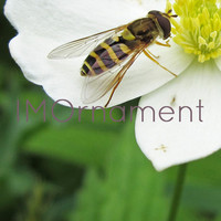 Bee Photo Download. 10x8. Printable Wall Art. Photo Art Print. Animal. Flower. Instant Download