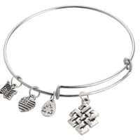 Alex and Ani  style Friendship marks pendant charm bracelet