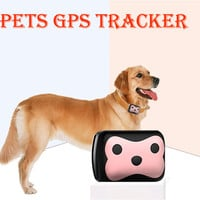 Free shipping super mini long standby time dog cat Pet personal gps tracker /IOS /Andriod App free website service Waterproof