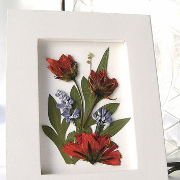 Pressed flower picture, Miniature framed picture, Orange cosmos, Blue salvia, Real garden flowers, Floral picture, Dried botanicals