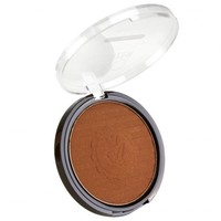 Everyday Low Price Absolute Pro Bronzer at ikatehouse - iKateHouse