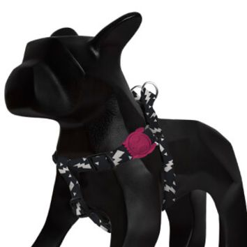 Flash | Step-in Dog Harness