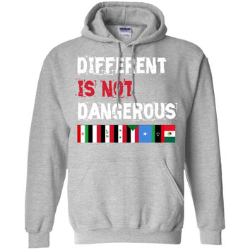 Different is not Dangerous Iran Iraq Sudan Mexico Flag T-shirt  Pullover Hoodie 8 oz