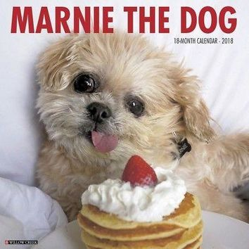 Marnie the Dog Wall Calendar, Shih Tzu by Willow Creek Press