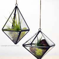 Geometric Air Plant Terrarium// Octahedron// Hanging String Garden// Green Gift