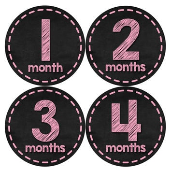 Baby Girl Monthly Baby Stickers Style #429