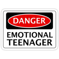 DANGER EMOTIONAL TEENAGER FAKE FUNNY SAFETY SIGN SIGNAGE
