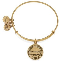 Alex and Ani | Path of Life Charm Bracelet | Nordstrom Rack