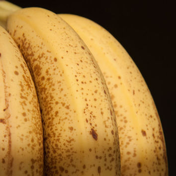 Fruit Photography - Banana Photo - Yellow Black Art Print - Kitchen Decor