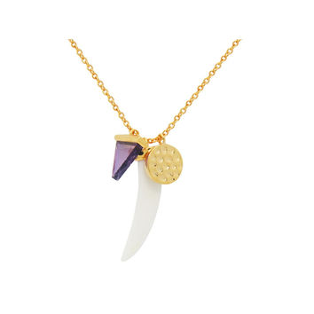 "Fronay Collection Horn Pendant, Amethyst Stone and CZ Disc Charms Necklace in 925 Sterling Silver: 18""+2"""