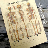 Wall Sticker Poster Painting Retro Vintage Decorative Mural Furnishings Wall Human Skeleton The Functions of Organs 42*30cm