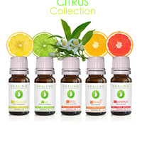 Citrus essential oils- Luxury citrus oils set- Undiluted Therapeutic essential oils- Ayurveda oils - Aromatherapy bath & skin care- Aromatic