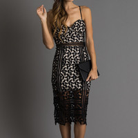 Hannah Black Lace Midi Dress