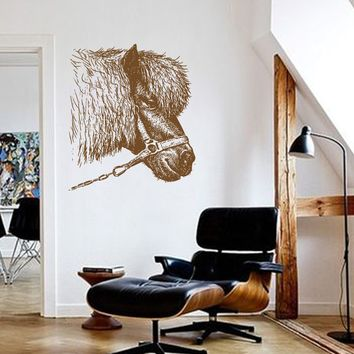 ik665 Wall Decal Sticker head horse pony stallion thoroughbred horse bedroom