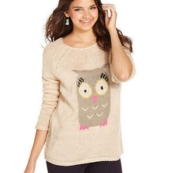 Jolt Juniors Sweater, Long Sleeve Owl Intarsia - Juniors Sweaters - Macy's