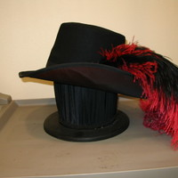 Costumes/Accessories/Hats/Men's Hats/Cavalier Hats/Cavalier Hat black red feathers side